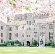 서울캠퍼스의 봄