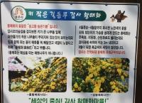 공주시 '계룡산 갑사가는 길' ~황매화(매화나무가 아닙니다)